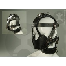 Padded Muzzle and Collar